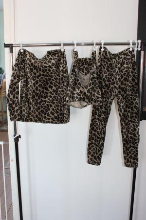 leopardiasu